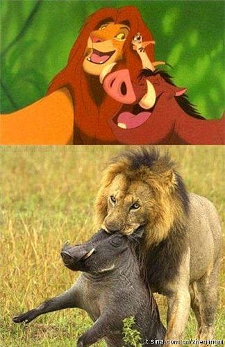 童話裡都是騙人的 !