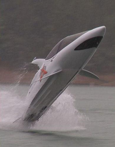 扮成這樣在水中活動, 就不怕比鯊魚吃掉了!