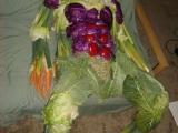 超雷!傳說中的蔬菜侠