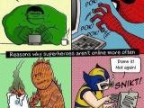 英雄不上網的原因............
