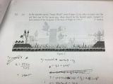 憤怒鳥考題 : Angry Birds on a physics exam