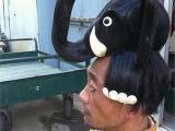 日本大叔的雷人 大象髮型~