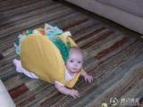 寶寶三文治