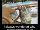 難怪飲料總是莫名其妙消失...