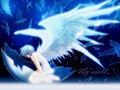 12 星 座 天 使 vs 12 星 座 魔 鬼