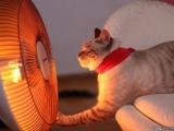 天冷要記得保暖唷!