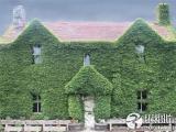 童話中的房子