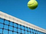 網球肘纏身 研究:注血可緩和