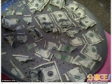 狗狗會吃錢!把主人3萬元吞下肚...