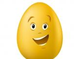 雞蛋的故事
