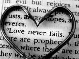 讓你明白 愛情 的文章