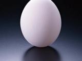 {王八蛋}  雞蛋原來有多逹八種煮法.