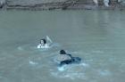 老婆和老媽掉落水,救一個