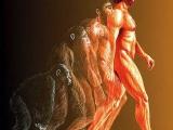 人類學家預測: 未來將出現第三性, 男人將滅絕