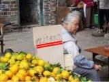大陸橘奶奶「甜過初戀」爆紅! 網友讚:史上最成功行銷