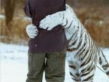 抱個白虎實在是太美了