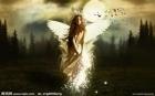 被貶的天使
