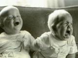 弟弟! 我只是說笑! 你不是領養的! 哈哈哈~