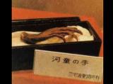 """日本河童是傳說中的""""水鬼""""嗎?"""
