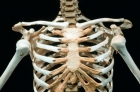 解剖手術臺上少女突然睜開眼