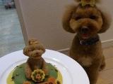 哪個是蛋糕哪個是狗呀?