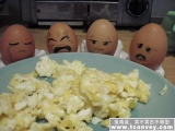 普普通通的炒蛋令它們哭了...