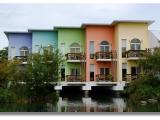 五彩顏色教你辨別「真假」健康