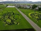 日本人種田的藝術