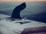 机翼上的幽灵
