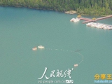 新疆喀納斯湖發現不明水怪 比遊艇還長!