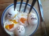 蛋蛋的末日
