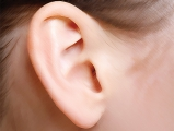 從耳朵看你的天賦與健康