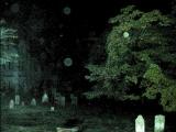 在墓地中影到Orbs