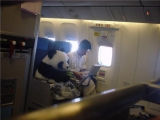 他們一定是在看............功夫熊貓!!!!!!!!
