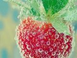 草莓掉入水中的一瞬間,美爆了