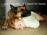 你先睡, 我來等聖誕老人吧 :)