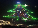 聖誕樹的由來