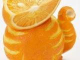 橙貓!有創意!