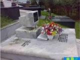 獻給宅男的墓碑