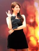 林志玲黑色低胸短裙參加某房地産商舉辦的推介活動