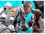 她懷著身孕,消防員從一場大火中救出了她,接著又衝進了熊熊烈火,火滅了,消防員累得癱坐地上喘息,她向消防員走去。當記者夏洛特按下快門時,她親吻了他!