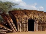 在非洲的大地上...有一排大方包!