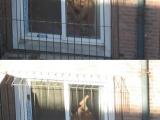 年輕鄰居辦事不拉窗簾