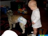 我給狗狗穿尿不濕