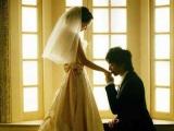 完美求婚攻略:你願意嫁給我嗎