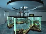 全球最不可思議的水族缸