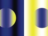 揭秘奇特視覺錯覺圖:同眼不同色 懷特效應