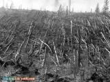地球歷史上的九大驚人爆炸事件
