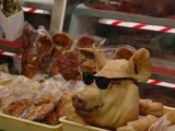 在超市看到一頭裝模作樣的豬