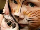 哇哈,兩隻好可愛的貓咪啊!你喜歡哪一隻?